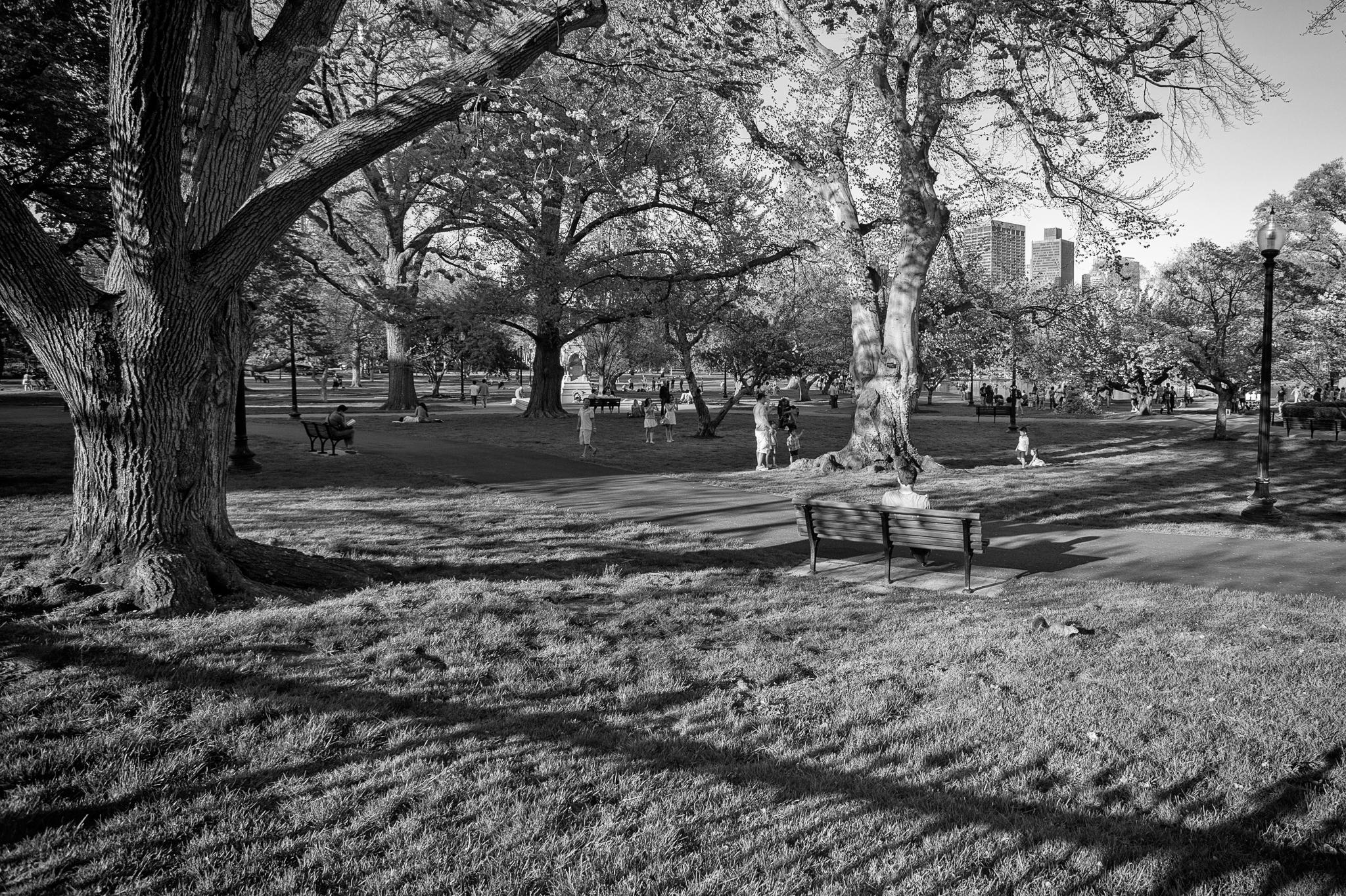 Boston Street Photography